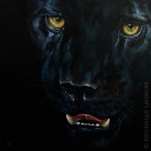 MELANISTIC_IV_Oil_on_canvas_40x40_2012